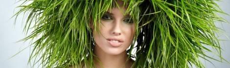 Самый лучший шампунь для волос: особенности выбора.