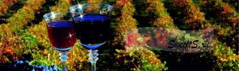 Тонкости производства хороших вин
